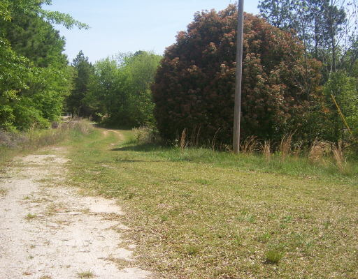 Photo of home for sale at 150 Ethel Ln, Tyrone GA