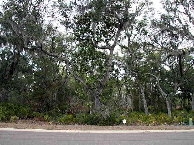 Photo of home for sale at 206 Cobia Ln, St. Marys GA