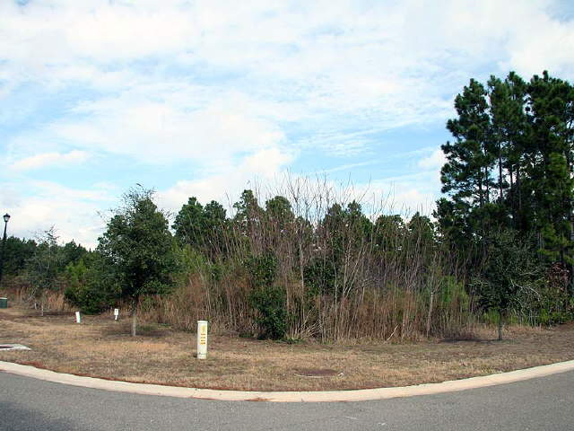 Photo of home for sale at 202 Neap Tide Ln, St. Marys GA