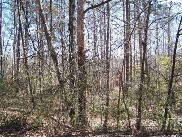 Photo of home for sale at 0 Hickory Dr, Covington GA