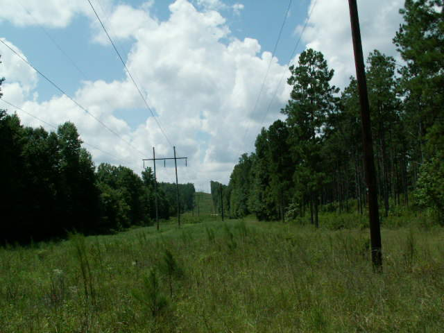 Photo of home for sale at 0 Old Durand Rd, Greenville GA
