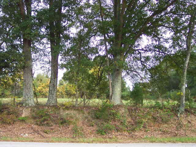 Photo of home for sale at 1843 Knight Cir, Loganville GA