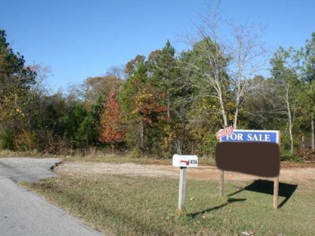 Photo of home for sale at 1438 East View Rd, Conyers GA
