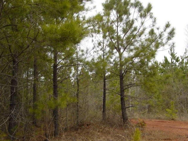 Photo of home for sale at 0 Dallas Mill Rd, Lagrange GA