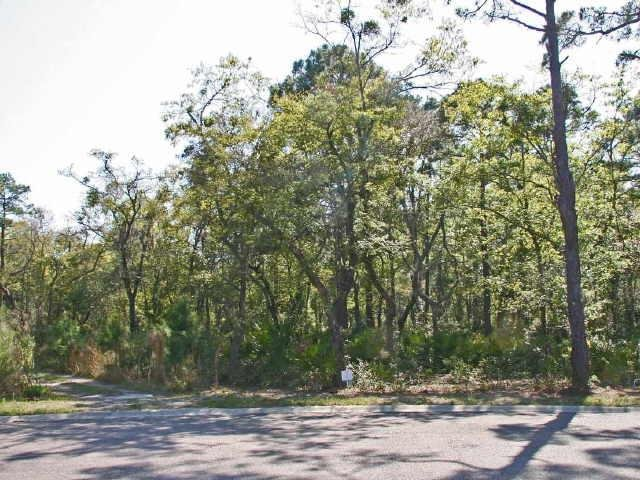 Photo of home for sale at 379 Overlook Ln, St. Marys GA