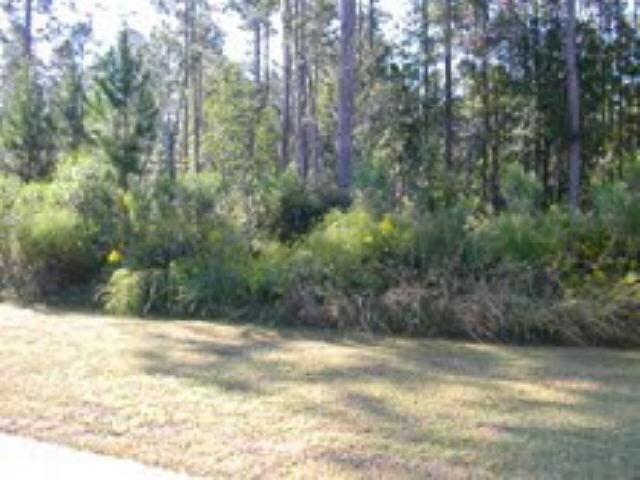 Photo of home for sale at 0 Sunrise Dr, Woodbine GA