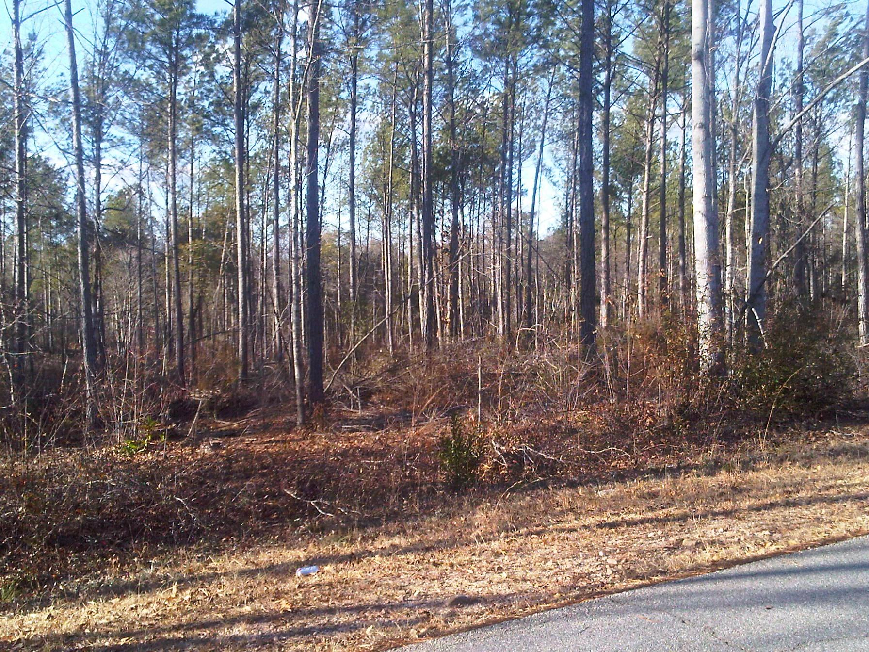 Photo of home for sale at 0 Marsh Rd, West Point GA