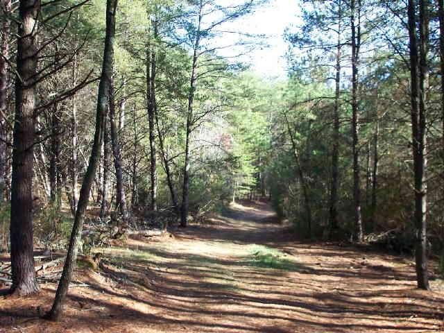 Photo of home for sale at 0 Thaxton Rd, Franklin GA