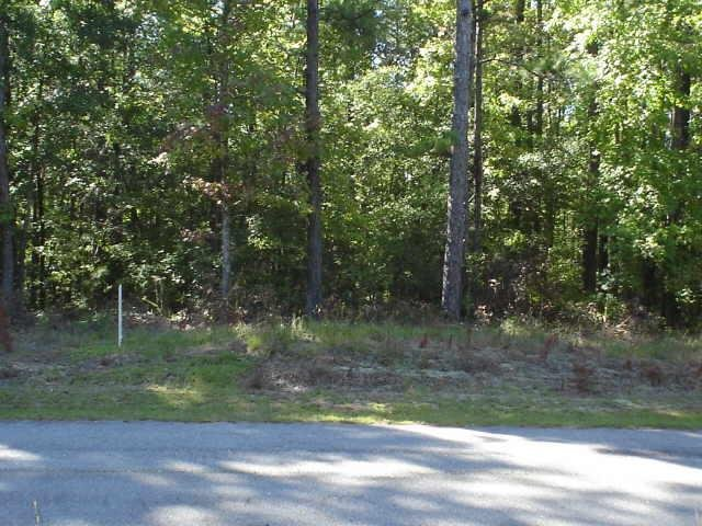 Photo of home for sale at 0 County Rd 450, Lanett AL