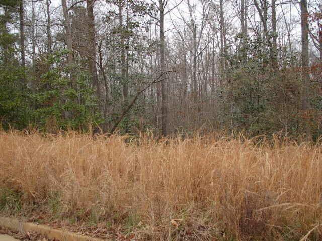 Photo of home for sale at 306 Roundstone Rock, Tyrone GA
