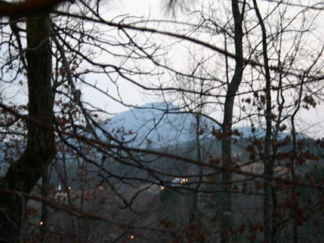 Photo of home for sale at 0 Erst Strasse, Helen GA
