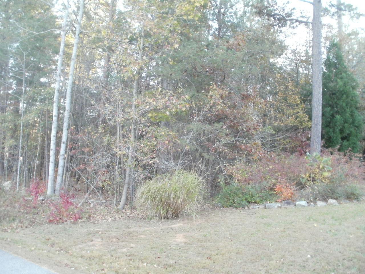 Photo of home for sale at 0 Memorial, Clarkesville GA