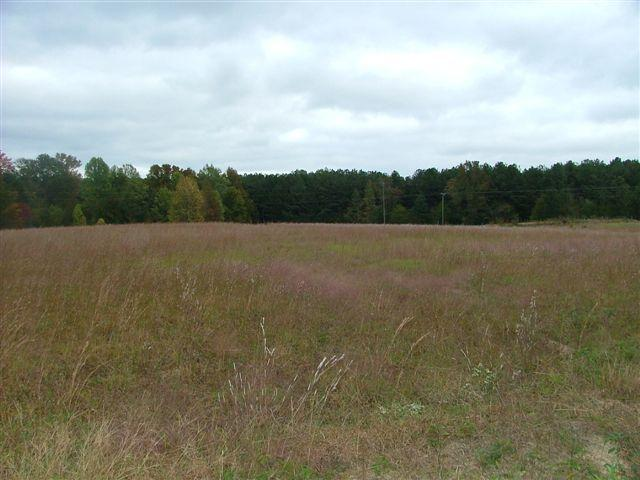 Photo of home for sale at 0 Kings Rd, Meansville GA