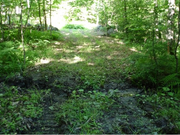 CHARLESTOWN NH LAND  for sale $$27,500 | 1.27 Acres  | Price Per Acre $21,653