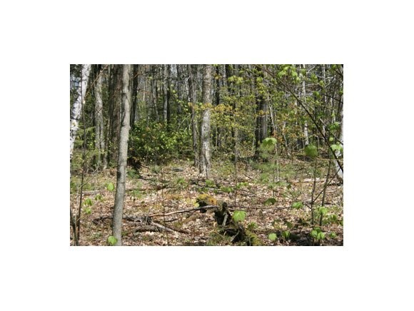Lempster NH 03605 Land  for sale $List Price is $18,500