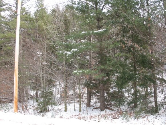 NEWPORT NH LAND  for sale $$17,700 | 1.4 Acres  | Price Per Acre $12,642