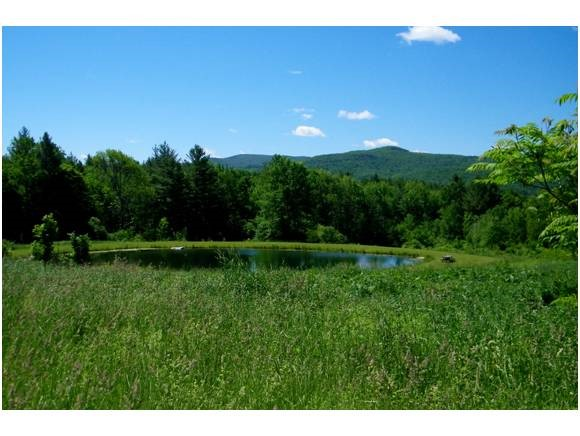 403 Bowlsville Road, Mount Holly, VT 05758