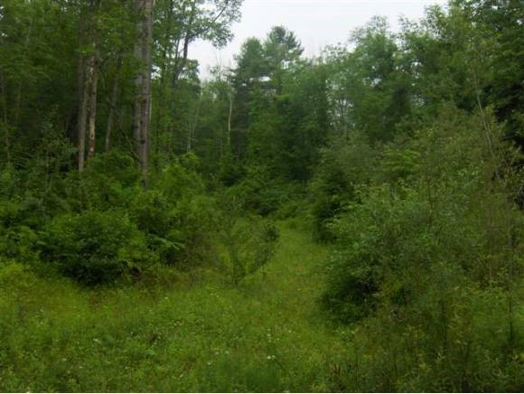 Springfield VT 05156 Land  for sale $List Price is $64,500