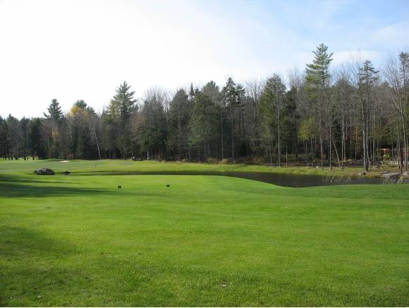 Village of Eastman in Town of Grantham NH  03753Land  for sale $List Price is $89,000