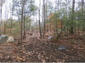 FRANCESTOWN NH LAND  for sale $$95,000 | 35.2 Acres  | Price Per Acre $3,267
