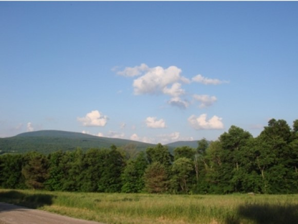 VILLAGE OF BENNINGTON IN TOWN OF POWNAL VT LAND  for sale $$99,000 | 7.48 Acres  | Price Per Acre $0