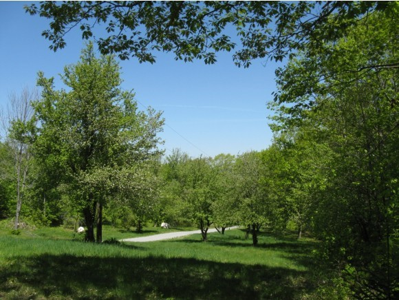 GOSHEN NHLAND  for sale $$159,500 | 13.7 Acres  | Price Per Acre $11,642