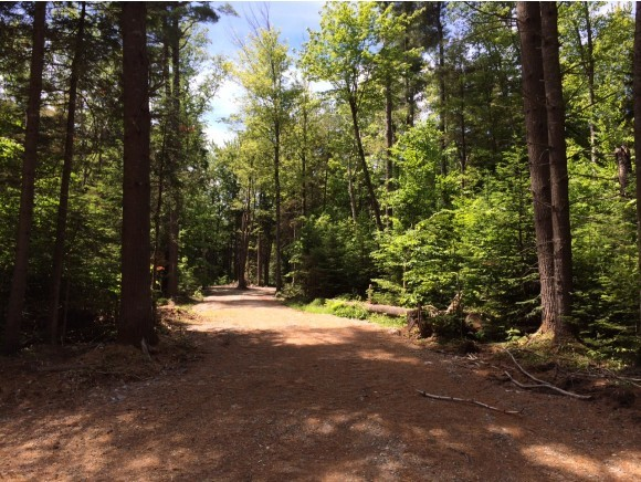 Lot 44.1 Canedy Road, Stratton, VT 05360