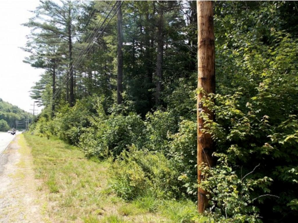 If you are looking for that special, private lot located close to Attitash convenient to both the Mount Washington Valley and all it has to offer, as well as Bretton Woods, here is 13 plus acres with 530 ft. of road frontage located on Route 302! This treed lot has many potential sites for building, or perhaps you may want to subdivide it. There are possibilities here. Here is a lot to build your dream home!