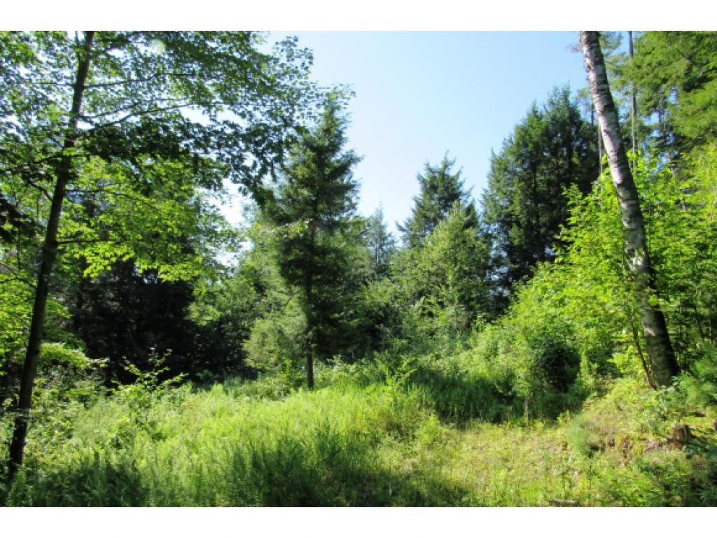 BRADFORD VT Land  for sale $$39,000 | 10.2 Acres  | Price Per Acre $3,823  | Total Lots 2