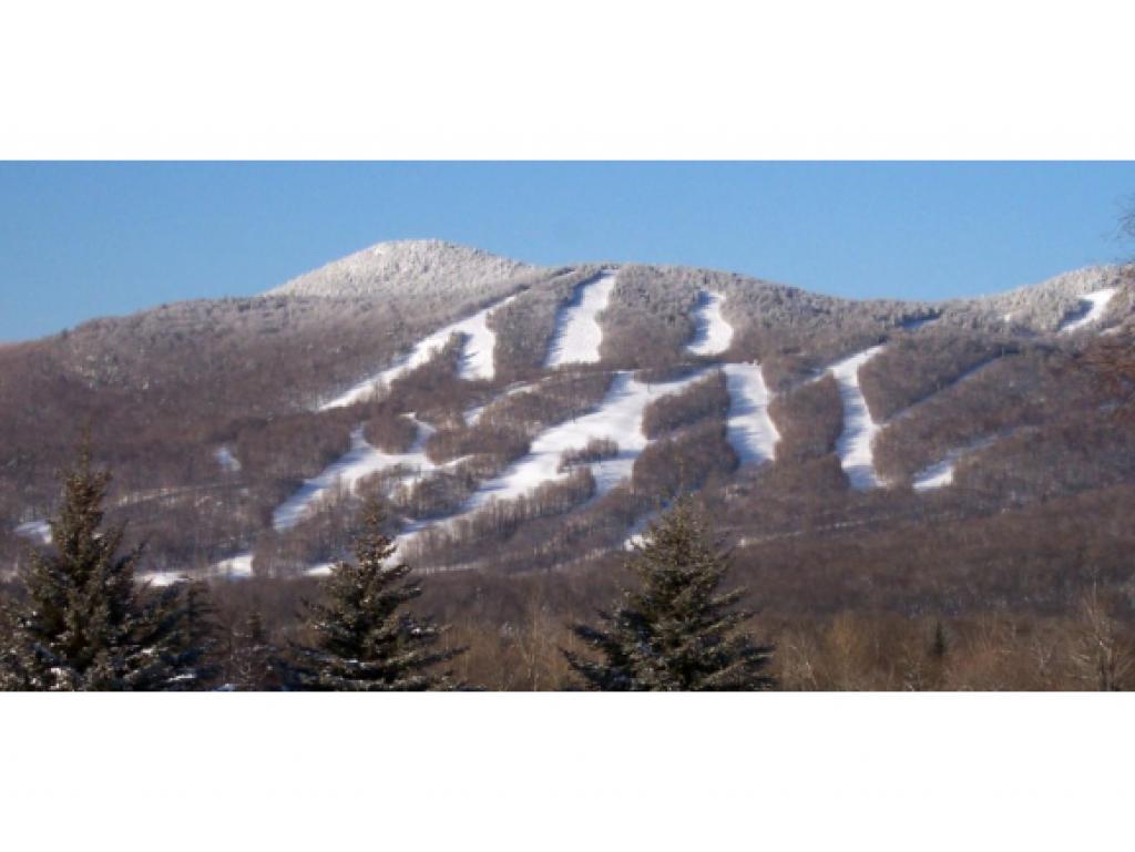 Mount-Snow-Real-Estate-4402561-28