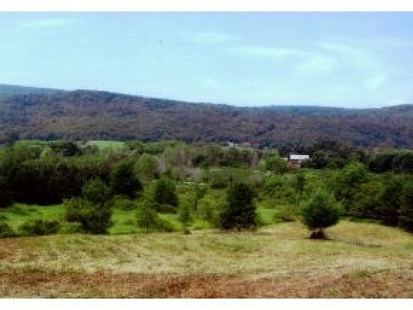 WALLINGFORD VT LAND  for sale $$84,000 | 11.8 Acres  | Price Per Acre $7,618