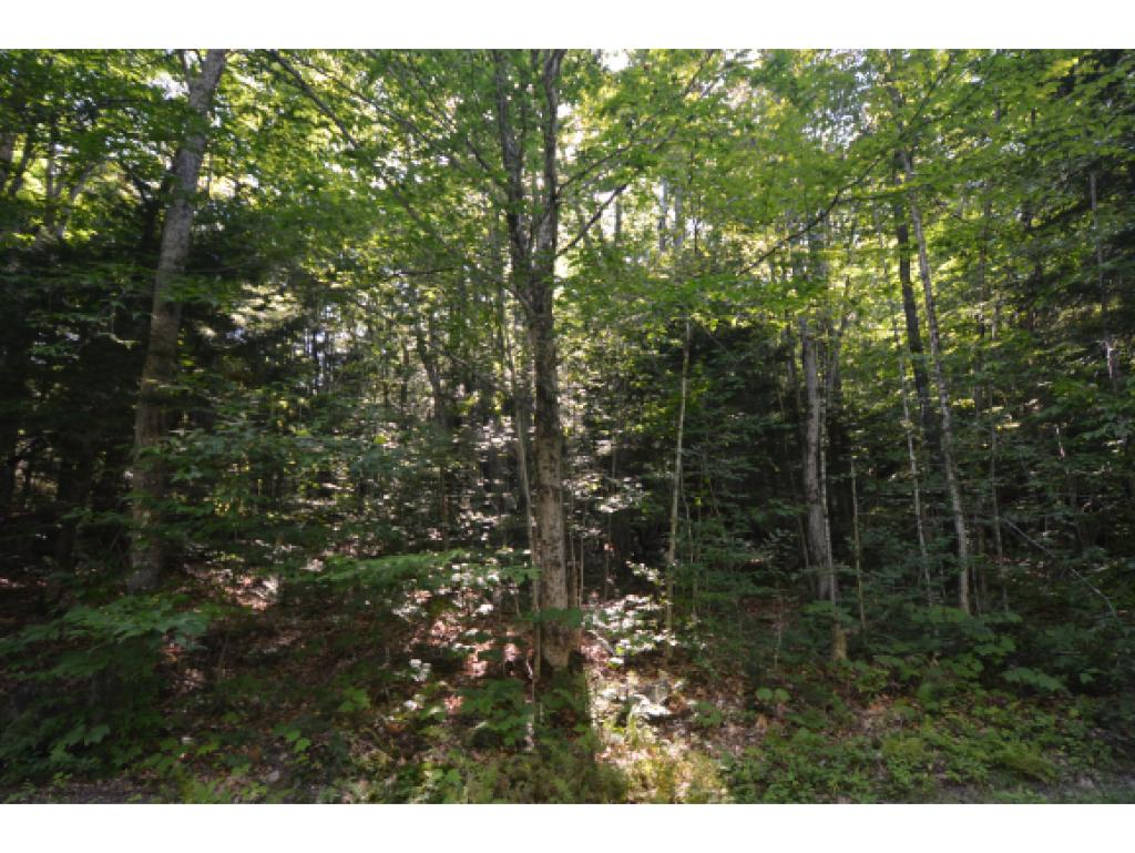 Village of Eastman in Town of Grantham NH  03753 Land  for sale $List Price is $9,900