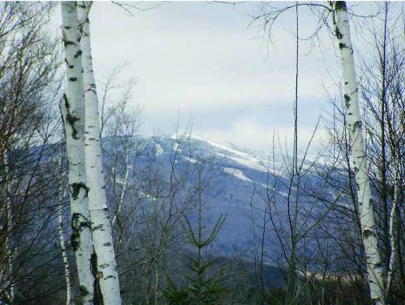 Mount-Snow-Real-Estate-4416433-2