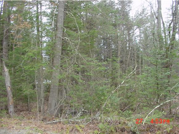 VILLAGE OF MOUNTAIN LAKES NH IN TOWN OF HAVERHILL NHLAND  for sale $$4,900 | 0.24 Acres  | Price Per Acre $0