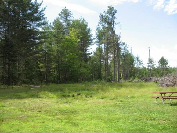 EFFINGHAM NH  LAND  for sale $43,999