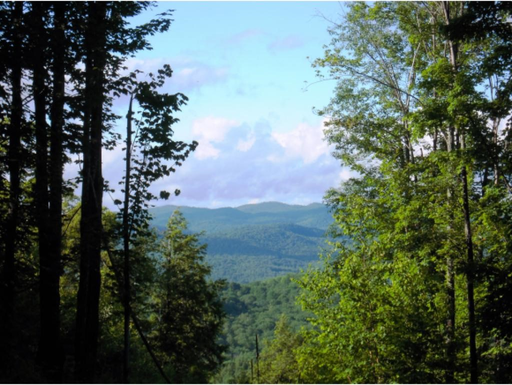 VILLAGE OF QUECHEE IN TOWN OF HARTFORD VT LAND  for sale $$149,000 | 0.99 Acres  | Price Per Acre $150,505  | Total Lots 2