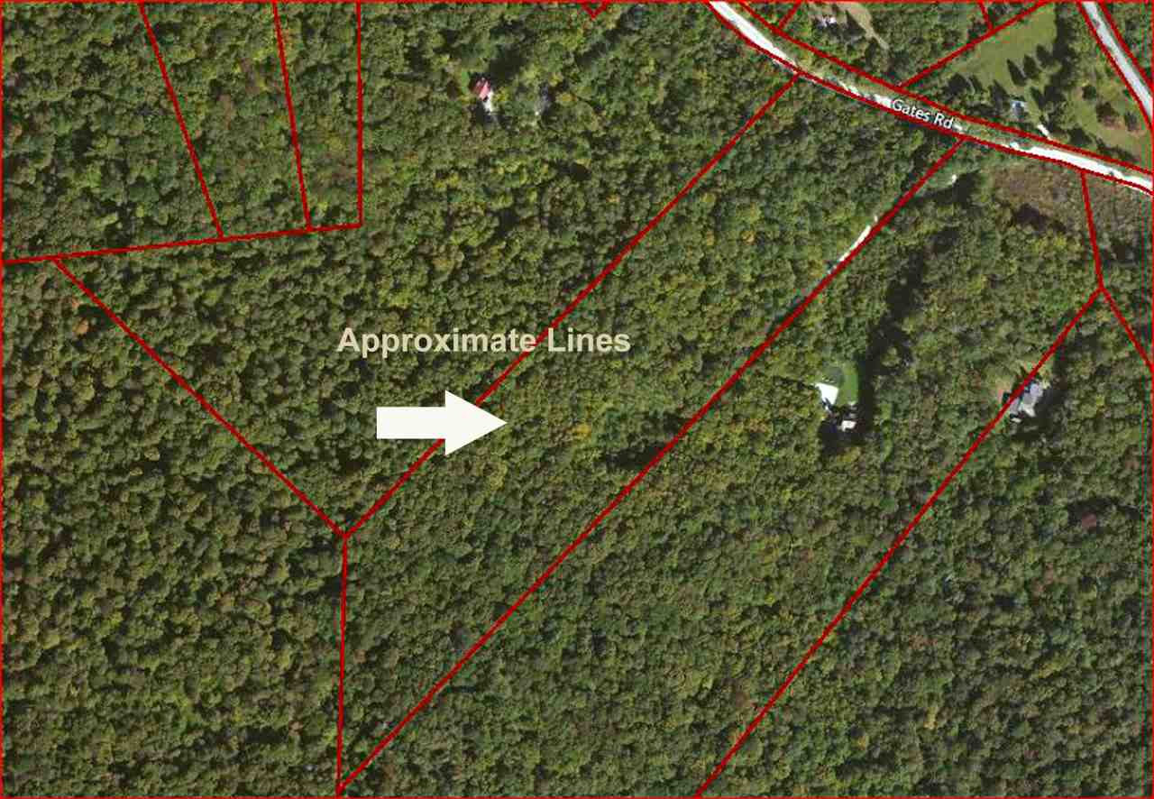 00 Gates Road South, Mount Holly, VT 05758