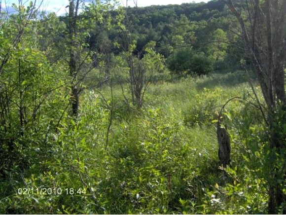 RANDOLPH VT LAND  for sale $$45,000 | 5.02 Acres  | Price Per Acre $8,964  | Total Lots 5