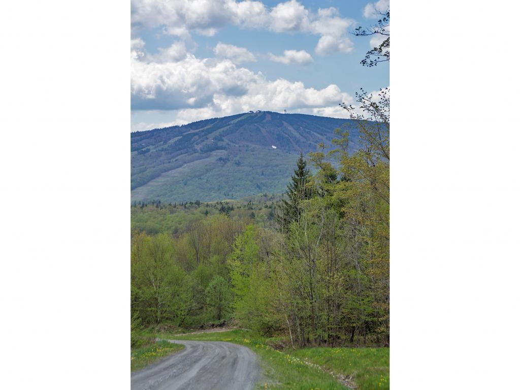 Mount-Snow-Real-Estate-4445913-1