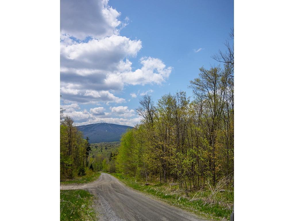 Mount-Snow-Real-Estate-4445913-2