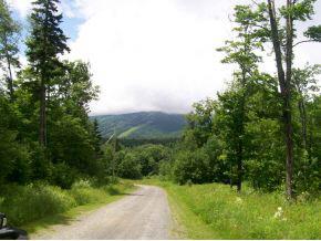 Mount-Snow-Real-Estate-4445913-4