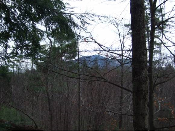 Well priced! Pleasant 3 acre end of road lot with seasonal views of Mt. Ascutney.Wooded, clearing would give year round views.So. East exposure. Driveway roughed in. State waste water permit # ww-2-4208.3 br system. Close to Knapp Ponds, great recreational area. Miles of trails.Good access to Okemo & Ludlow for all they offer.