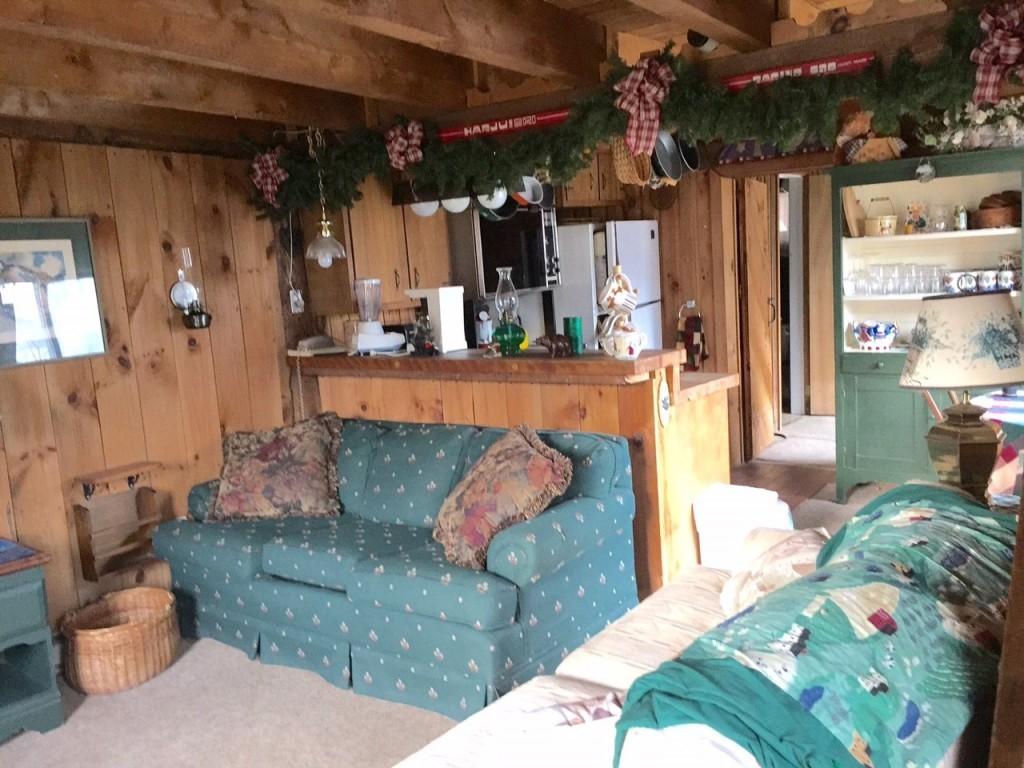 Mount-Snow-Real-Estate-4460542-6