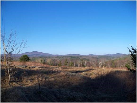 WALLINGFORD VT LAND  for sale $$175,000 | 17.1 Acres  | Price Per Acre $10,233