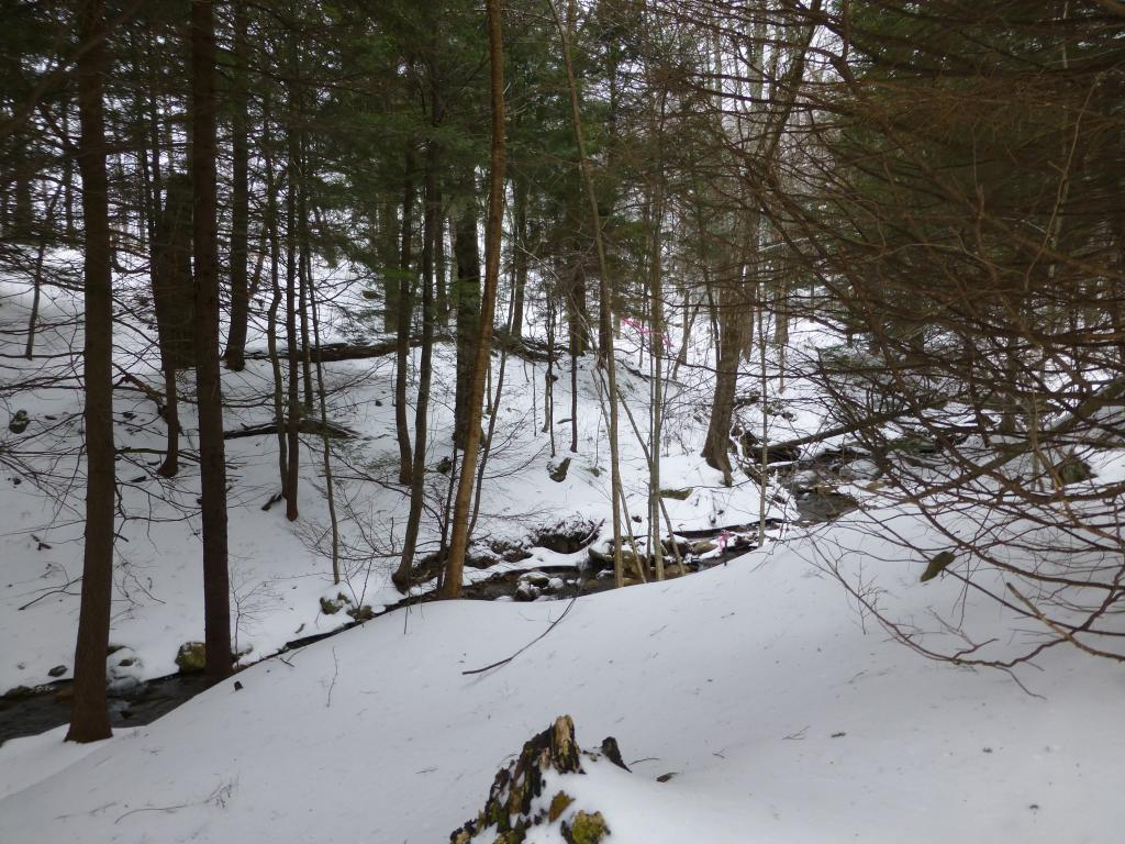 Mount-Snow-Real-Estate-4465115-2