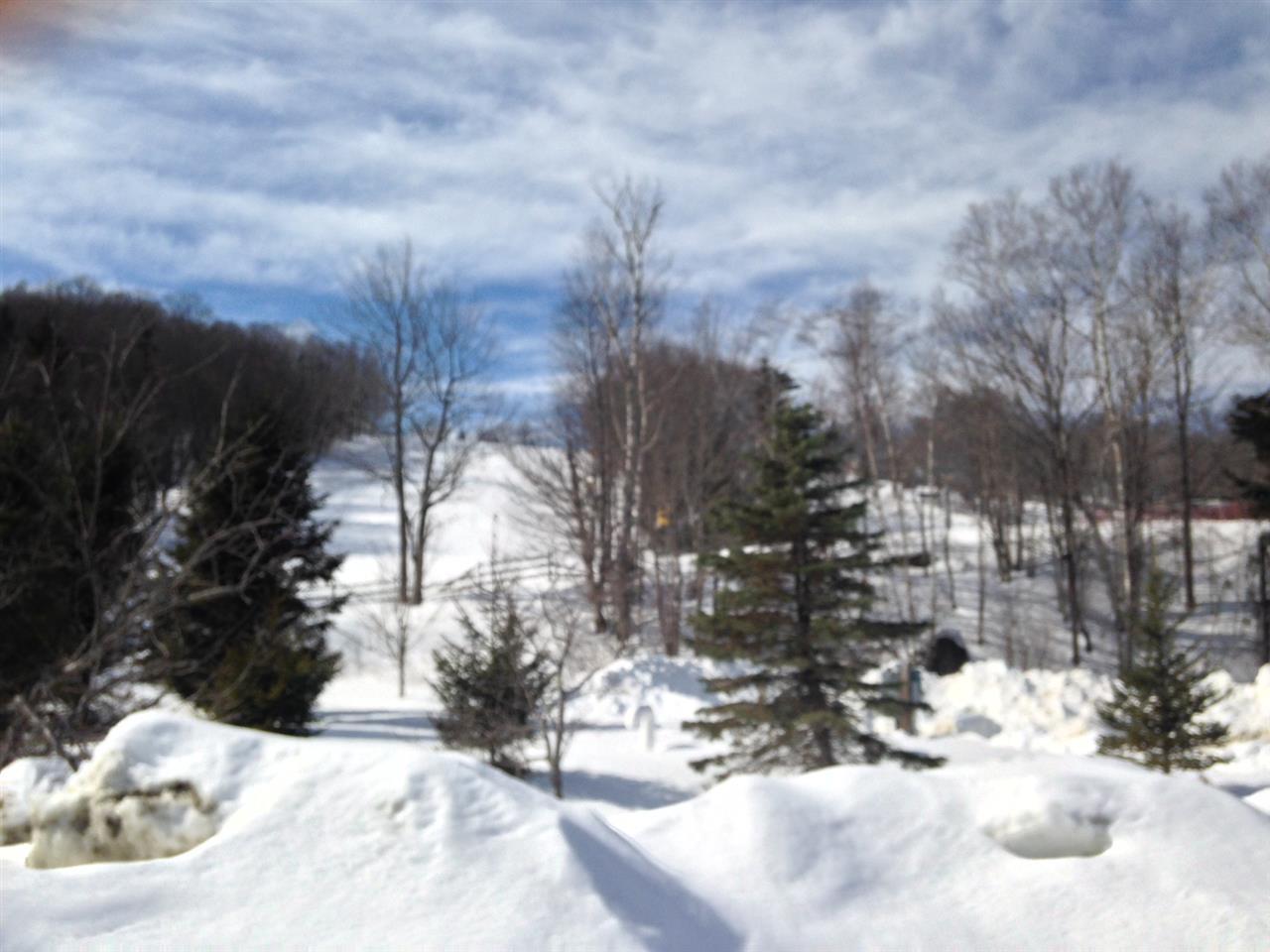 Mount-Snow-Real-Estate-4465115-4