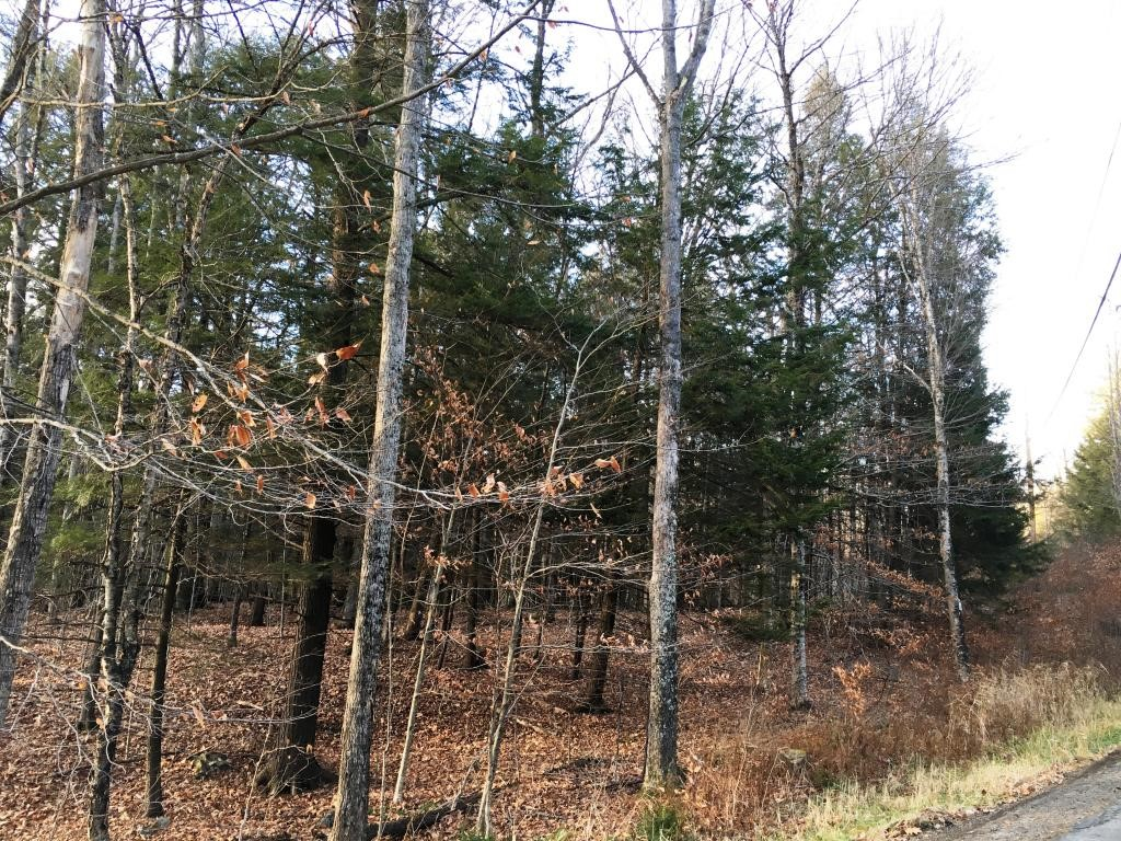 VILLAGE OF QUECHEE IN TOWN OF HARTFORD VTLAND  for sale $$40,000 | 6.05 Acres  | Price Per Acre $6,611  | Total Lots 2