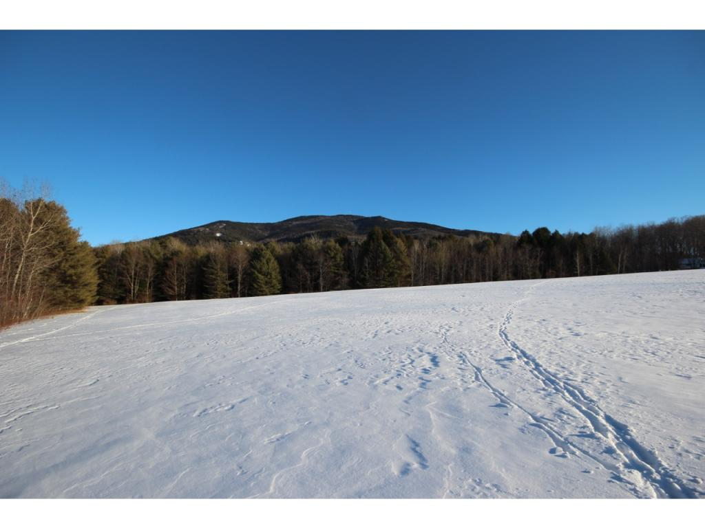 WEST WINDSOR VT LAND  for sale $$445,000 | 42.78 Acres  | Price Per Acre $11,103