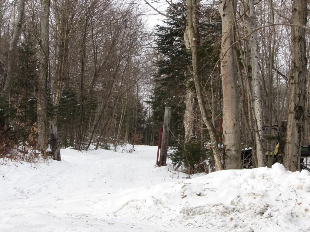Mount-Snow-Real-Estate-4469164-6