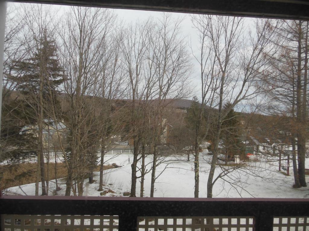Mount-Snow-Real-Estate-4469447-7